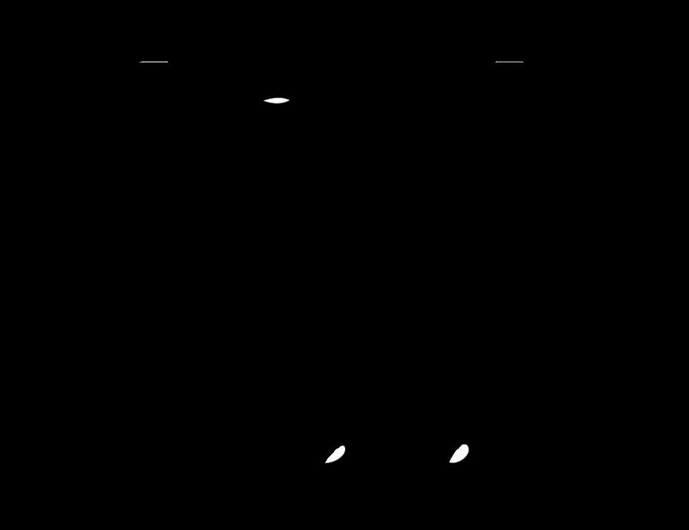 AquaFlor